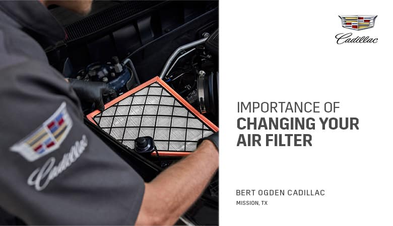 Importance of Changing Your Car's Cabin Air Filter | Bert Ogden Cadillac | Mission, TX