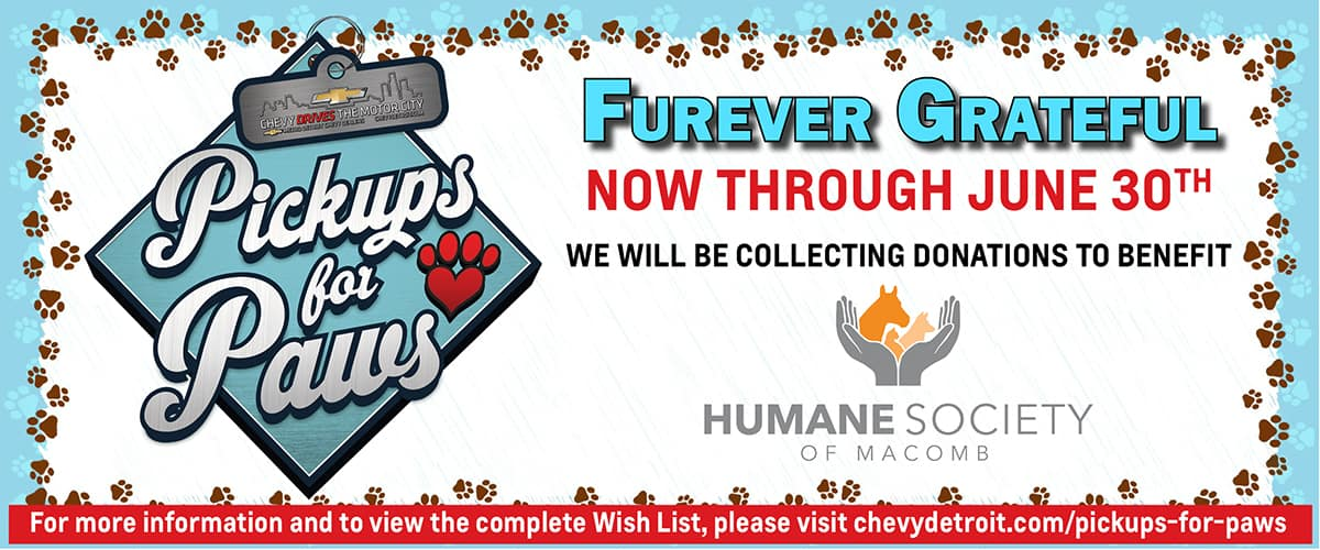 1200×525 Pickups for Paws CT June 2021