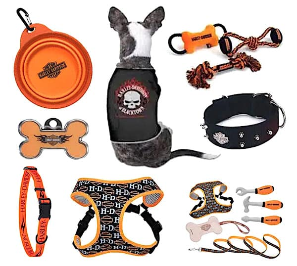 Harley Dog Day Products